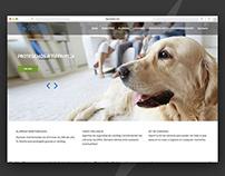 LionSeg | Diseño Web