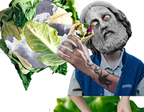 Collages for vegan city project