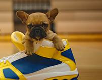 Pedigree Pup-letes