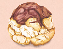 Food Illustration - Choux Bun