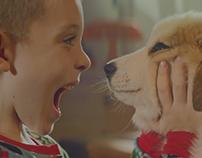 #PetsAreNotToys / Fundación Affinity