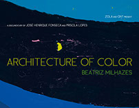 Arquitetura da Cor / Beatriz Milhazes