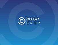 Corporate Company Logo Designing