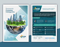 Corporate Flyer - ANAP