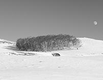 ⓟ B&W Landscape Photography - Snowy