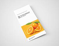 DL Bi-Fold Brochure Mockup