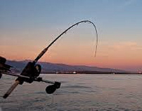 Why is Fishing the Perfect Team Building Activity?