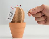Cork Cactus