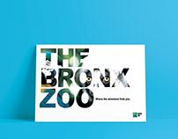Bronx Zoo Redesign