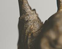 Rock Buddha