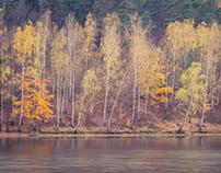 Faded Autumn