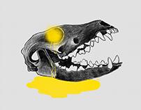 Skulls | Procreate