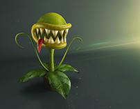 Fly Trap | 3D