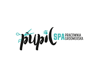 Pupil Spa - branding design