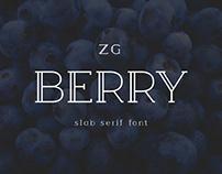 Berry Slab Serif Font