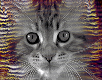 HOLOGRAM CAT