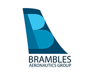 Brambles Aeronautics Group Logo Design