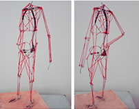 Anatomy | wire model