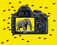 Raj Daniel - Nikon D7000