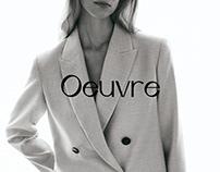 Oeuvre ecommerce UX/UI