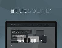 Bluesound Russia Website
