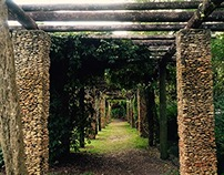 Secret Garden Collection (Radio Script)