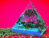 PyramidSeasons