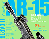 AR-15 magazine 2017 issue 2