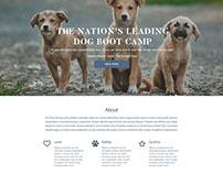 dog academy website concept