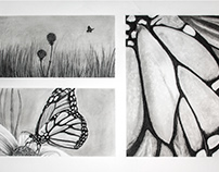 Butterfly 3-Part Charcoal Drawing