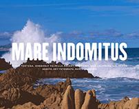 MARE INDOMITUS. Pictures of Baja California shores.