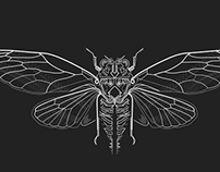 Geometric Cicada Insect Generation