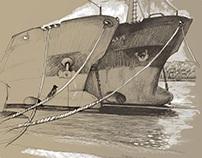 Sea steamers