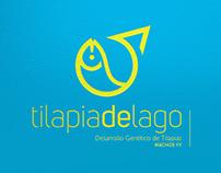TILAPIA DE LAGO