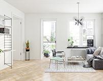 Apartment-Scandinavian style