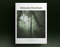 Green Lifestyle Brochure Template