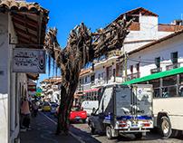 More of Puerto Vallarta Streets, Mexico, 2015