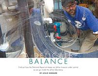A Delicate Balance - Jellyfish Care