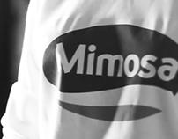 Mimosa // GOYA