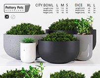 3d modeling & visualization PotteryPots City bowl, Dice