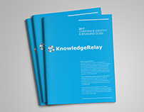 Creation of Corporate Style Guide for Knowledge Relay