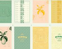 Diseño de envases y branding - Herber Gin