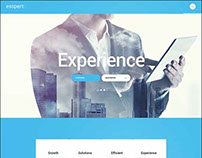 275+ Best responsive business wordpress themes
