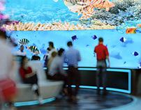 Virtual Reality Theme park.
