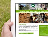 Conception Site Web Ethic étapes La vie en vert