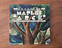 Donación Maples Arce, Museo Nacional de Arte.