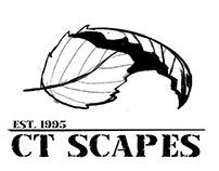 CT Scapes Logo Design