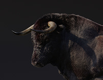 Bull for Sehsucht / Mercedes X-Class Spot