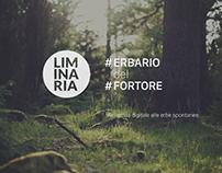 Guideline - Erbario