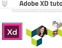 How to create corporate photo grid in Adobe XD